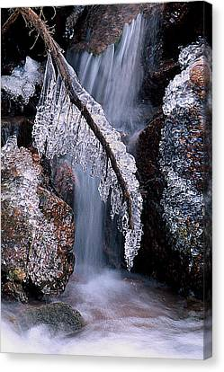 Fronzen Beauty Aka Ice Is Nice Xii Canvas Print