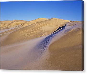 Frost Accents The Sand Dunes In Oregon Canvas Print by Robert L. Potts