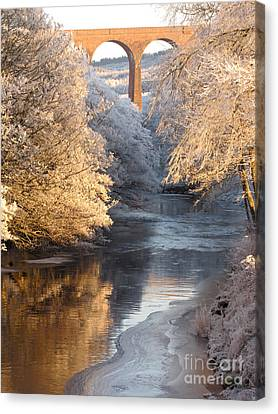 Canvas Print featuring the photograph Frost And Ice by Jacqi Elmslie