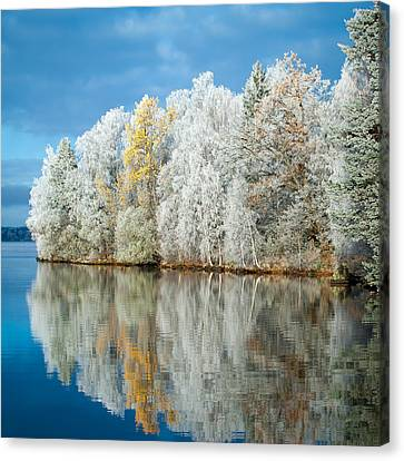 Frost And Reflections Canvas Print