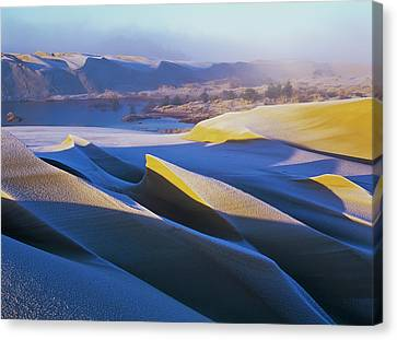 Frost And Sunlight Decorate The Sand Canvas Print by Robert L. Potts