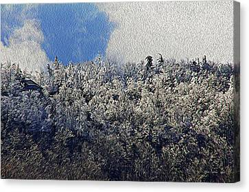 Frost Line 2 Canvas Print by Tom Culver