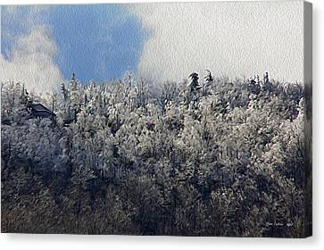 Frost Line Canvas Print by Tom Culver