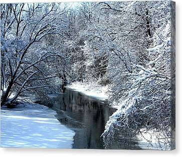 Canvas Print - Frosted Creek by Debbie Finley