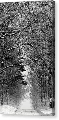 Frosted Steps II Canvas Print