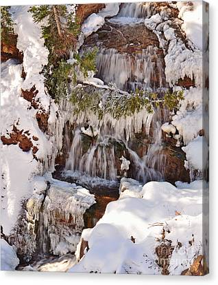 Frosty Cascades Canvas Print