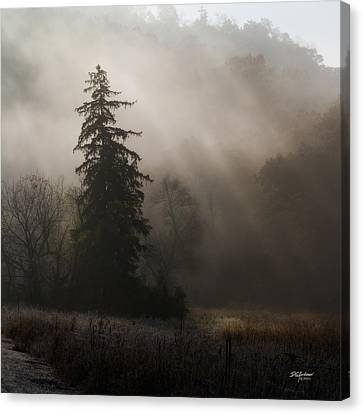 Frosty Foggy Morning Canvas Print