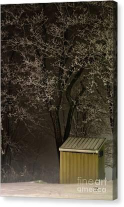 Frosty Foggy Night Canvas Print by Lois Bryan