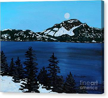 Frosty Moonlit Night Canvas Print by Barbara Griffin