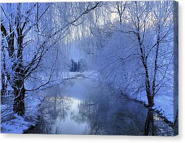 Frosty Morn Canvas Print