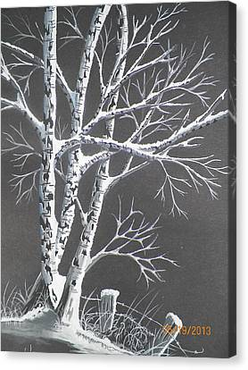 Frosty Night Canvas Print by Wolfgang Pranke