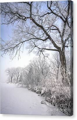 Canvas Print featuring the photograph Frosty Shoreline by Kari Yearous