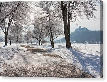 Frosty Stroll With Sugarloaf Canvas Print by Kari Yearous