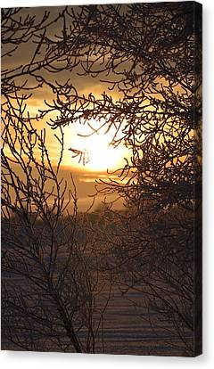 Canvas Print featuring the photograph Frosty Sunrise by Dacia Doroff