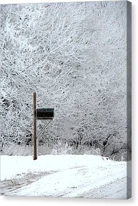Frosty Winter Morning Canvas Print