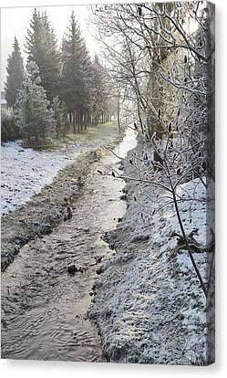 Canvas Print featuring the painting Frozen Air by Felicia Tica