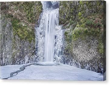Frozen At Multnomah Falls Canvas Print by David Gn