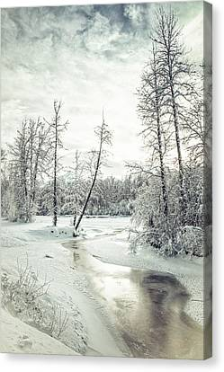 Frozen Creek At Sunset Canvas Print by Michele Cornelius