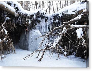 Frozen Creek Canvas Print by Dacia Doroff
