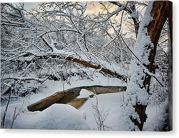 Frozen Creek Canvas Print by Sebastian Musial