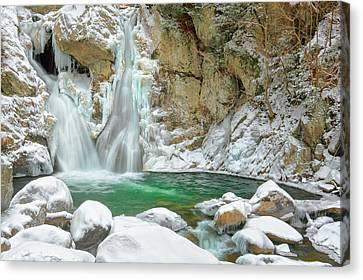 Frozen Emerald Canvas Print by Bill Wakeley