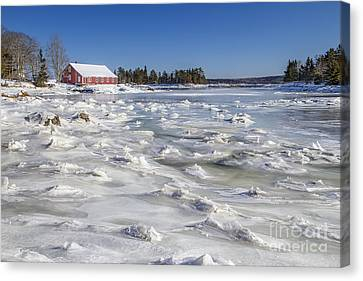 Maine Barns Canvas Print - Frozen by Evelina Kremsdorf