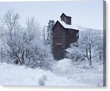 Frozen In Time Canvas Print by Darren  White