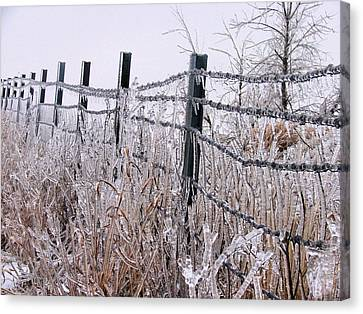 Frozen In Time Canvas Print by JC Findley