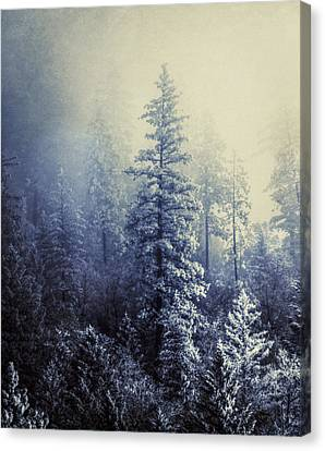 Frozen In Time Canvas Print by Melanie Lankford Photography