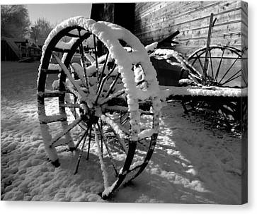 Frozen In Time Canvas Print by Steven Milner