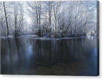 Frozen In Time Canvas Print by Svetlana Sewell