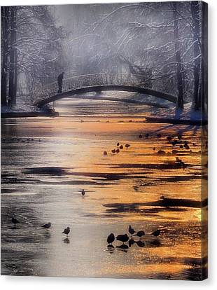 Ice Figures Canvas Print - Frozen Lake by Cristian Andreescu