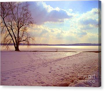 Frozen Lake II Canvas Print by Silvie Kendall