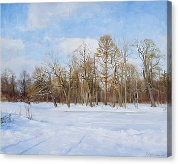 Frozen Lake Canvas Print by Victoria Kharchenko