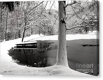 Frozen Pond 2014 Canvas Print