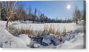 Frozen Pond Canvas Print by Patrick Jacquet
