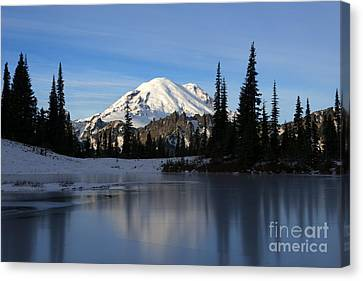 Frozen Reflection Canvas Print by Mike Dawson