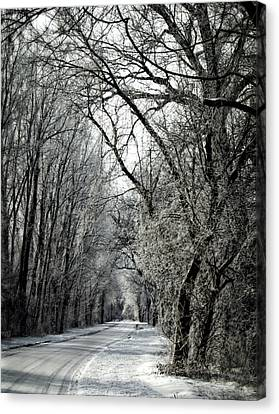 Frozen Road Canvas Print by Wayne Meyer