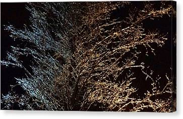 Canvas Print featuring the photograph Frozen Wonder  by Anthony Fishburne