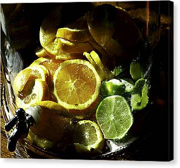 Fruit Drink Canvas Print by Camille Lopez