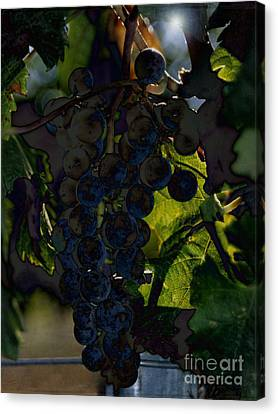 Concord Grapes Canvas Print - Fruit Of The Vine by Sharon Elliott