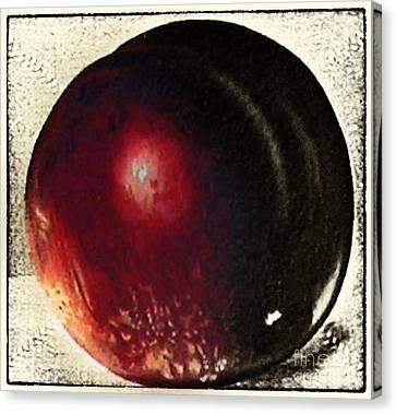 Fruit Painting Vintage Canvas Print