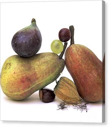 Fruit Variety Canvas Print by Bernard Jaubert