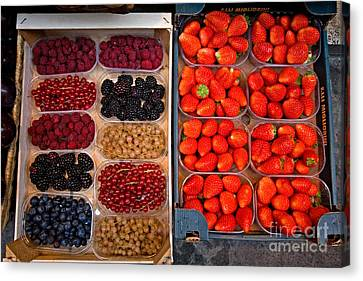 Fruits And Berries Canvas Print by Tim Holt
