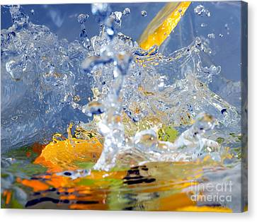 Fruits And Water Canvas Print