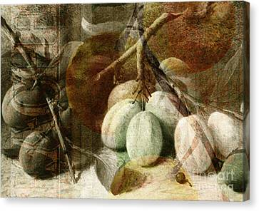 Fruits Background Canvas Print