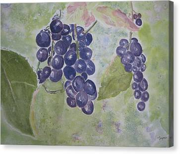 Fruits Of The Wine Canvas Print