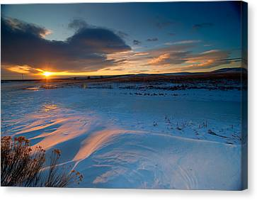 Fort Collins Canvas Print - Ft Collins Snow Sparkles by Preston Broadfoot