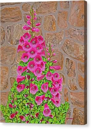 Fuchsia Profusion Canvas Print