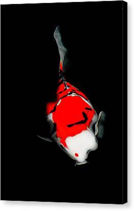 Fukushima1 Canvas Print